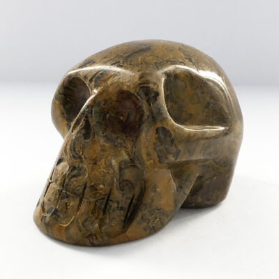 Stromatolite |Skull | Sacred Earth Crystals | Wholesale Crystals | Brisbane | Australia